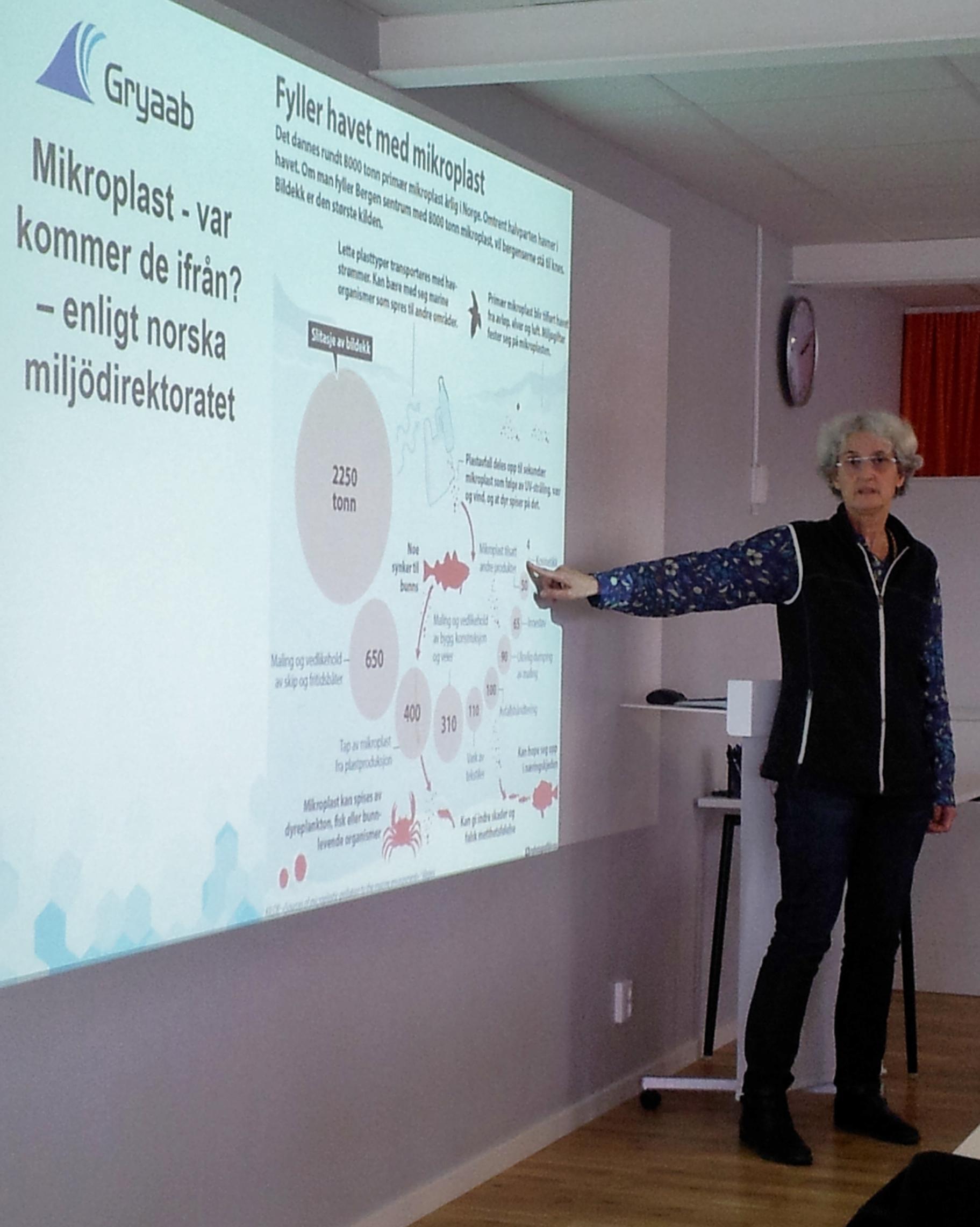 Ann Mattsson Gryaab